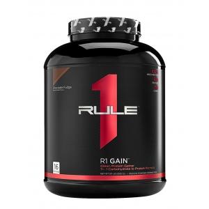 r1-gain.jpg