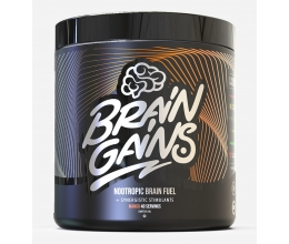 BRAIN GAINS Nootropic Brain Fuel BLACK EDITION 300g Mango