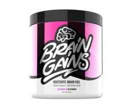 BRAIN GAINS Nootropic Brain Fuel 260g