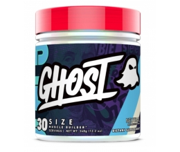 GHOST Size 390g (30servings)
