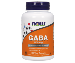 NOW FOODS GABA 500mg with Vitamin B6 - 100 vcaps