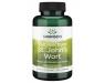 swanson-premium-st-johns-wort-375-mg-120-caps.jpg
